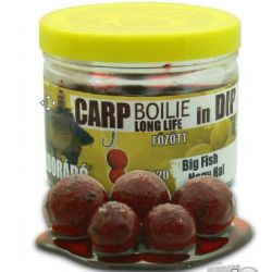 Haldorado Boilies 16-20mm Big Fish en Remojo 100gr