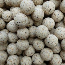 CG BAITS Boilies NUGGA 24mm
