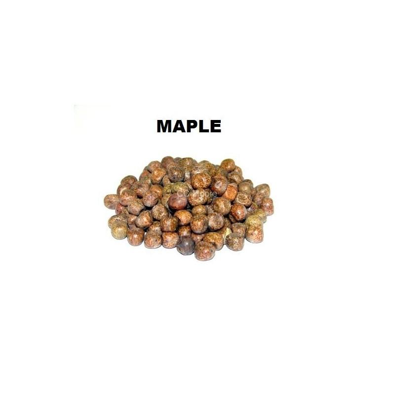 CCMoore Semillas de Maple 1kg