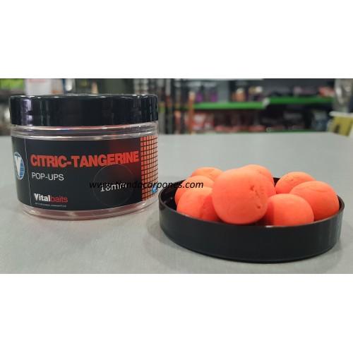 Vital Baits Boilies Flotantes Citric-Tangerine 18mm
